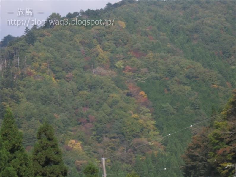 波賀の山並み