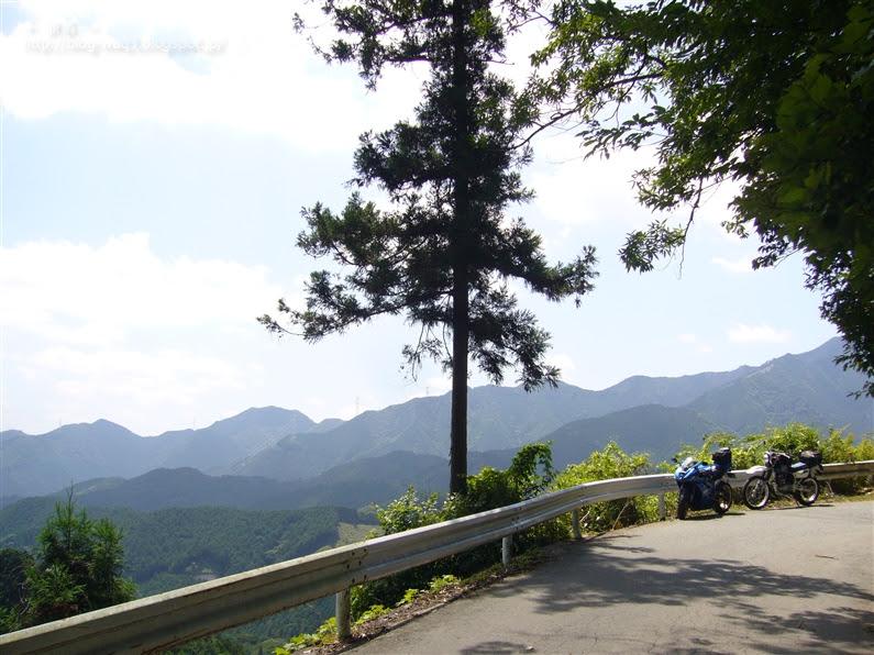 国道368号線 仁柿峠にて