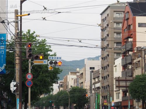 黄色い矢印信号は、路面電車への信号だよーん