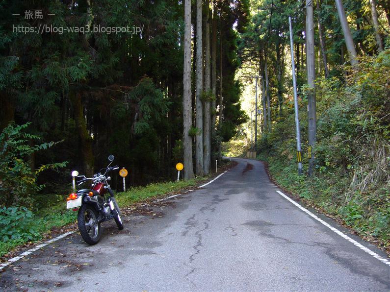 国道484号線は山中を貫く和休好みの道