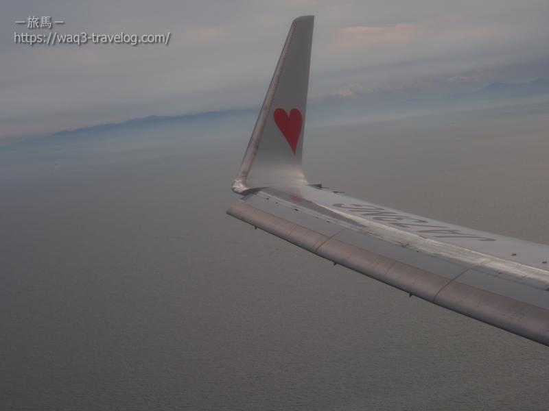 ボーイング737-800の主翼
