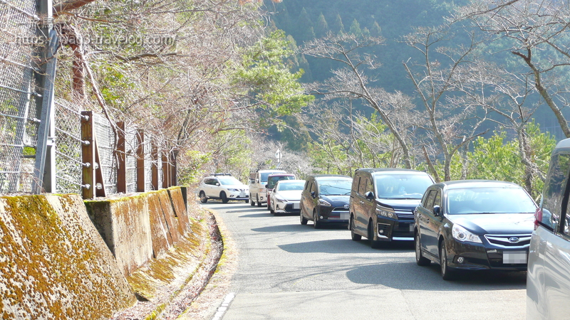 佐仲ダム沿いの道