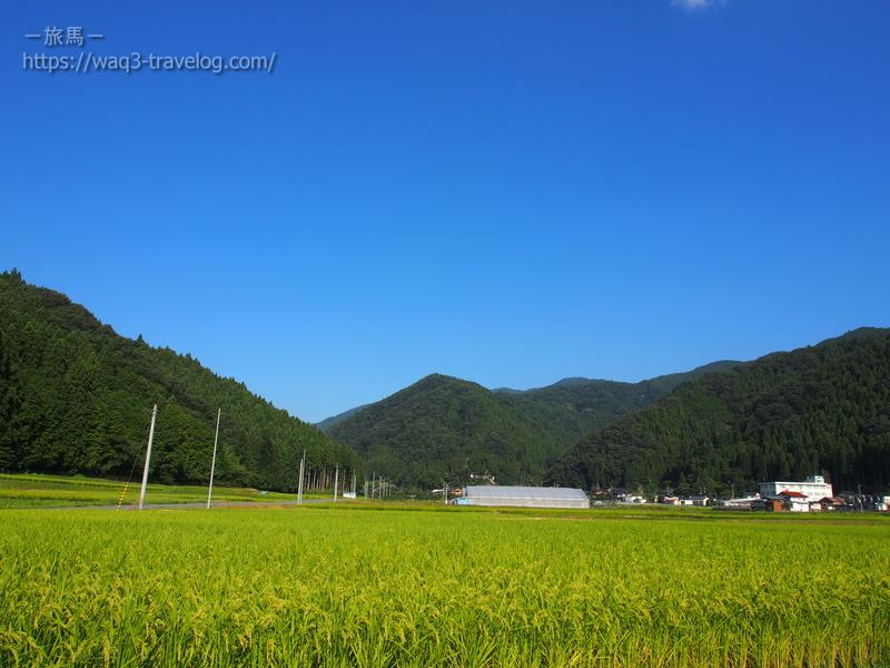 田んぼの広がる風景