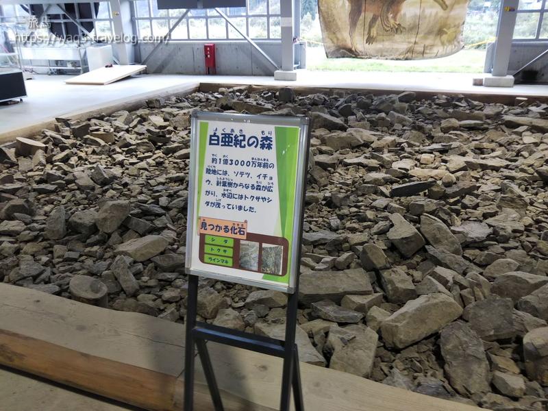 白亜紀の石がおいてある「白亜紀の森」