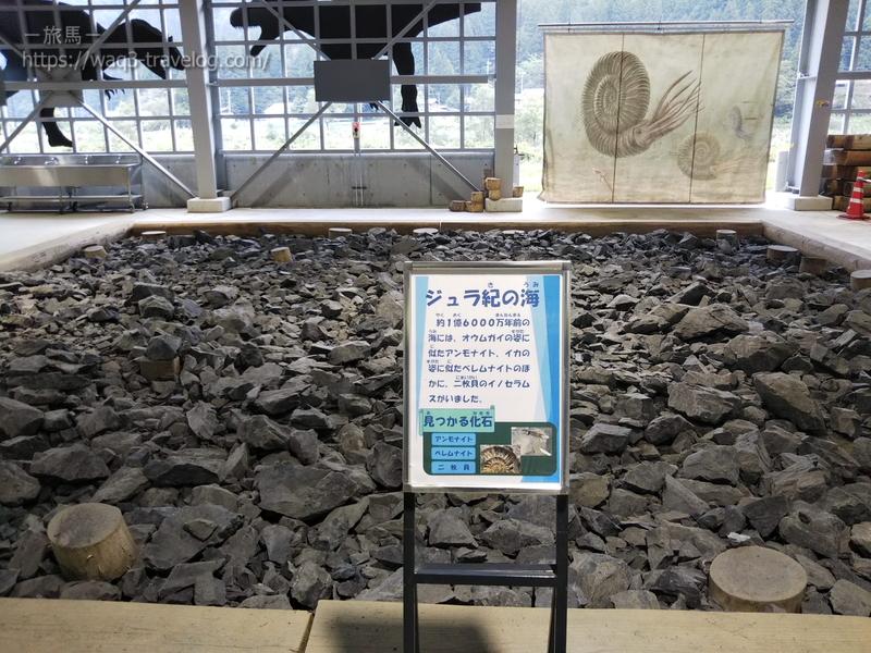 ジュラ紀の石がおいてある「ジュラ紀の海」
