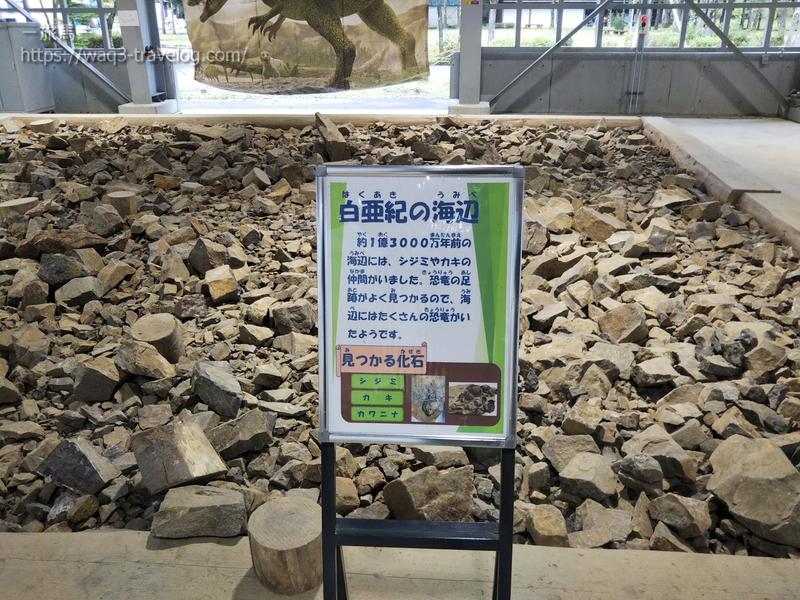 白亜紀の石がおいてある「白亜紀の海辺」