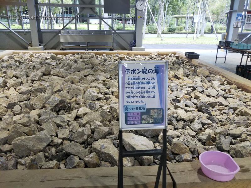 デボン紀の石がおいてある「デボン紀の海」