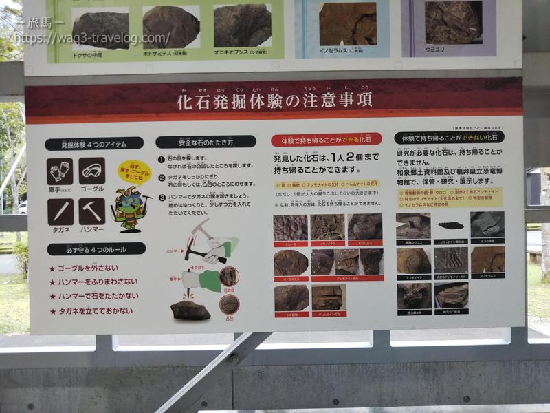 化石発掘体験の注意事項