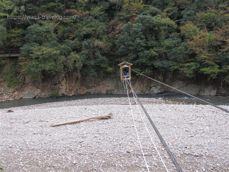 奈良県十津川村の野猿